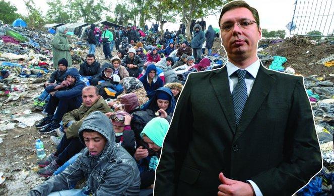 MEDIJI KRIJU: Migranti haraju ovim delom, SRBI ne izlaze na ulicu bez pratnje pasa! 1