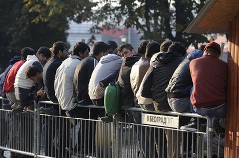 Migranti grupno napali devojku u Beogradu! ZAVRŠILA SA POVREDAMA GLAVE! 1